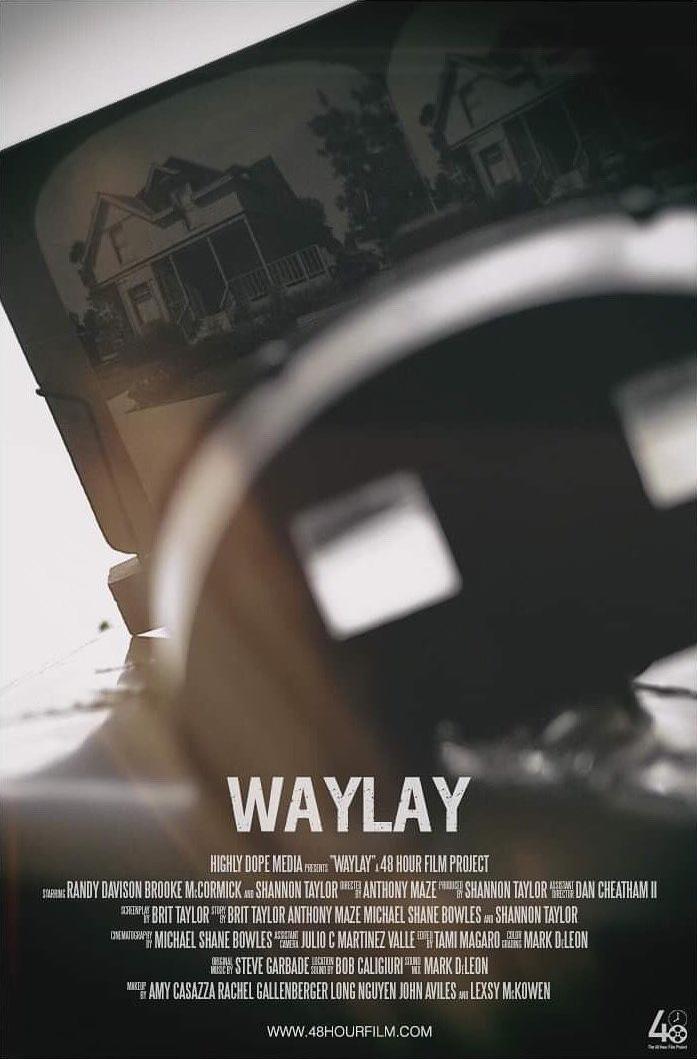 Waylay copy